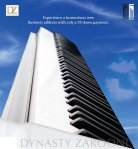 brochure01afpdynastyzarooni03