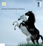 brochure02afpdyza021