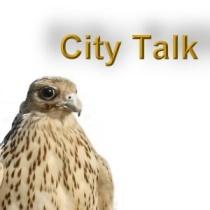 city-talk-falcon